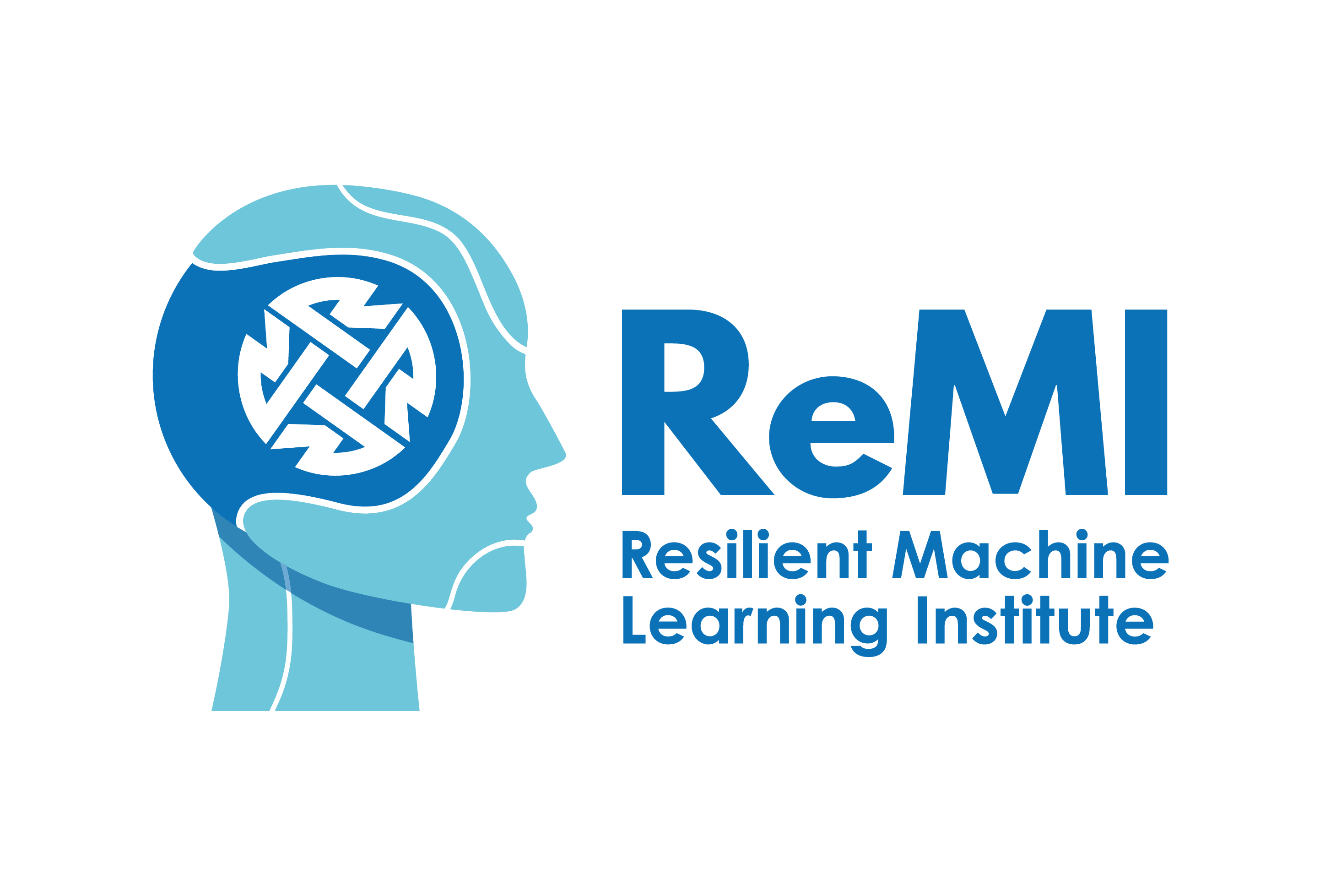 Resilient Machine Learning Institute